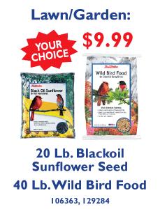 20 Lb. Blackoil Sunflower Seed or 40 Lb. Wild Bird Food - Your Choice $9.99