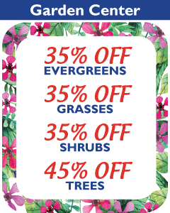35% Off Evergreens, Grasses and Shrubs. 45% Off Trees.