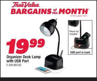 Organizer Desk Lamp with USB Port. $19.99