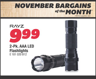 RAYZ 2-Pk. AAA LED Flashlights. Your Choice $9.99.